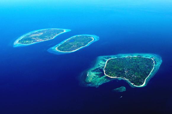 Island Life (1/6)